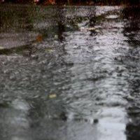 Дождь.. :: Валерия  Полещикова
