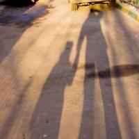 5. Фотография с контрастом фигур, силуэтов или линий. :: Сергей Стюняков