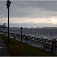 Набережная Волги. Вид на Энгельский мост. :: Anatol Livtsov