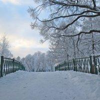 зимний мостик :: Елена