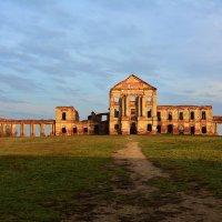 руины Ружанского замка. :: Paparazzi