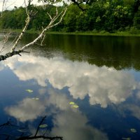 в реку смотрятся облака :: Александр Прокудин