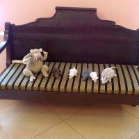 Натюрморт с мышками. :: Мила