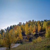 Яркий солнечный денек :: Лариса Димитрова