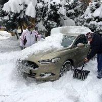 Обильный снегопад обрушился на Алматы. :: Anna Gornostayeva