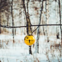 новогоднее настроение) :: Roman Dubrovin
