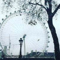 Глаз Лондона :: Victoria Kovalenko