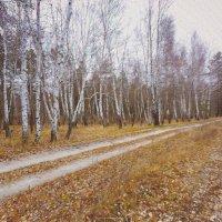Осенняя... :: Виктория Власова