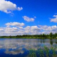 Лето.. :: Антонина Гугаева
