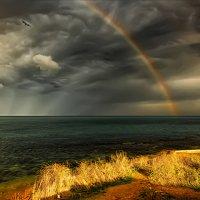 После дождя :: Виктор Мороз
