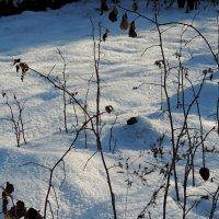 Снег искрится. :: bemam *