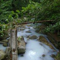 молочная река :: Надежда Элпис