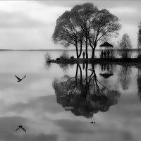Плещеево озеро :: Дмитрий Потапов
