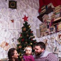 Новогодняя фотосессия :: Valentina Zaytseva