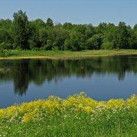 Филькино озеро. Гатчина :: максим лыков