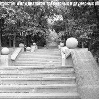 8.Фотография с контрастом и/или диалогом трёхмерных и двумерных объектов композиции. :: Елена Романова