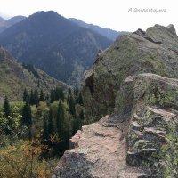 Гора не кажется неприступной, если смотреть с ее вершины. :: Anna Gornostayeva