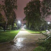 В парке осень :: Гулько Т