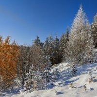 Осень и зима :: vladimir Bormotov