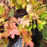 осень :: Marina Tamm