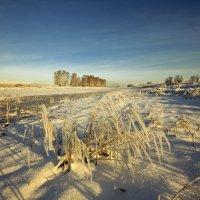 Туда, где на снегоходе только 12 :: Сергей Жуков