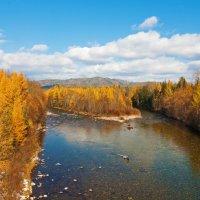 Два рукава быстрой реки :: Анатолий Иргл
