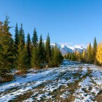 Поздняя осень в Тункинской долине :: Анатолий Иргл
