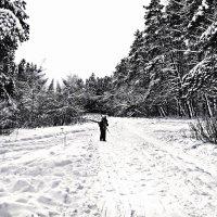 Russian winter :: Александр Липецкий