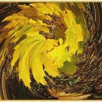 Закружила осень листопад :: Лидия (naum.lidiya)