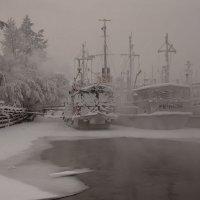 Пристань замёржших кораблей :: Сергей Герасимов