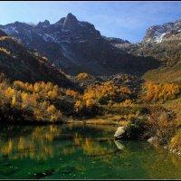 Золотая Долина ... :: Андрей Любимов