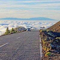 Дорога над облаками, о. Тенерифе :: Евгений Васин