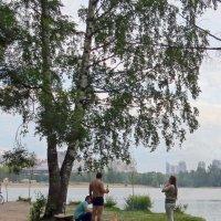Отдых с шашлычком! :: Вера Щукина