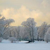очарование зимы :: Елена