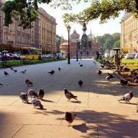Площадь Яна Матейко в Кракове :: Денис Кораблёв