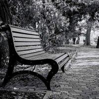 Одинокая скамья. :: Елена Данько