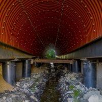 тоннель :: Сергей Шаврин