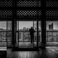 Tate Modern :: Antonina Burton