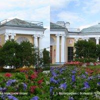 2_5 Фотографии с большой ГРИП и макро-объектом на переднем плане и на среднем плане. :: Алексей Епанешников