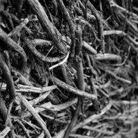 Плетеный  сарай для овец. (фрагмент стены) :: Валерия  Полещикова