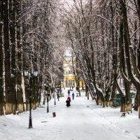 Гулять в парк :: Владимир Безбородов