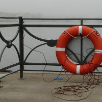 Вот он - спасательный круг в тумане :: Владимир Гилясев