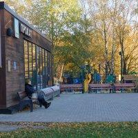 Осень жизни и осень года :: mikhail