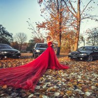 Volvo :: Vitaly Shokhan