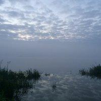 Туман на озере :: Andrei Karetin