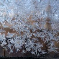 Рисует узоры мороз на оконном стекле. :: Надежда Парфенова