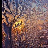 Зимним вечером у окна :: Сергей Чиняев