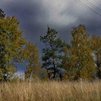 Перед грозой... :: Владимир Ильич Батарин