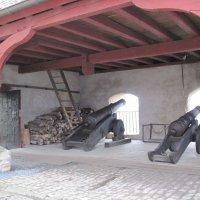Пушки замка Марксбург всегда на страже! :: ponsv