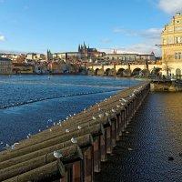 Моя Прага :: Евгений Васин
